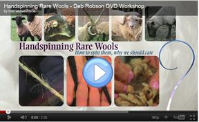 Spinning Rare Wools