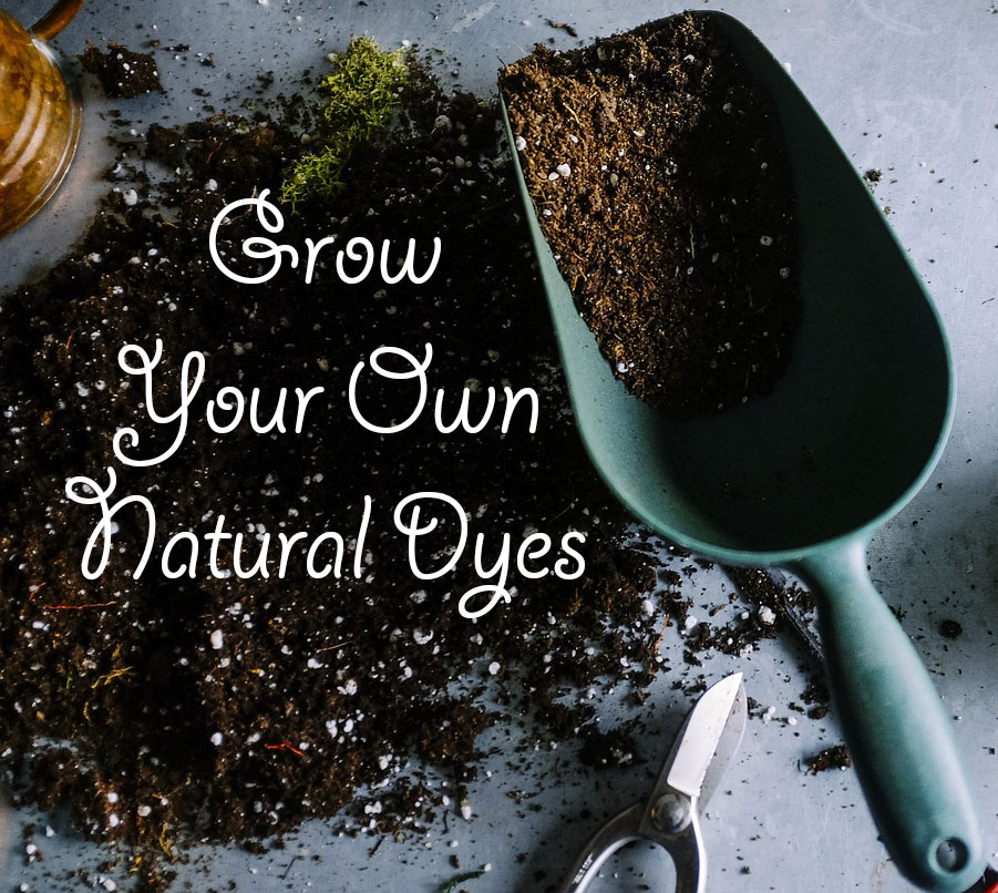 Grow Your Own Natural Dyes